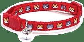 collar-para-gatos