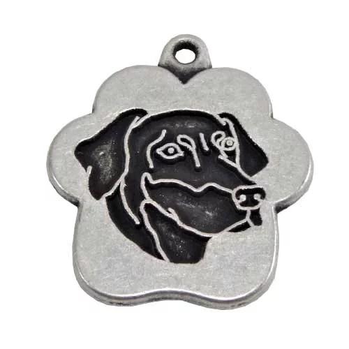 placa de identificacion para perros peru lima