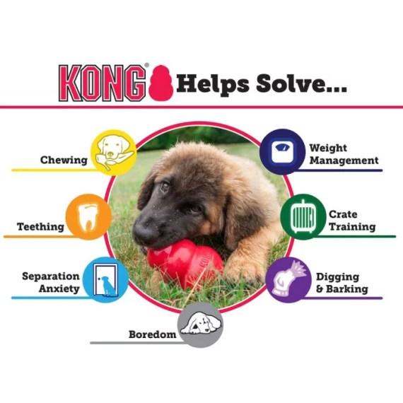 guia kong rellenable juguete para perros
