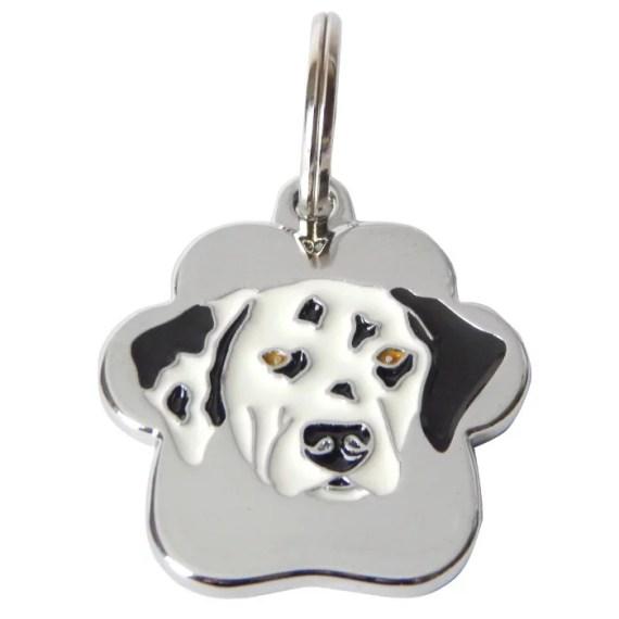 placa de identificacion para perros grabado peru lima