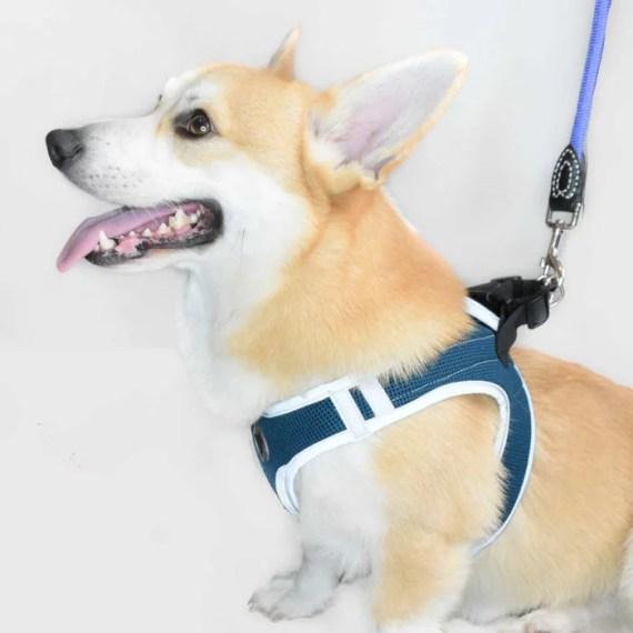 arnes reflectivo para perros corgi peru lima peru croci