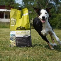 comida premium para perros acana peru
