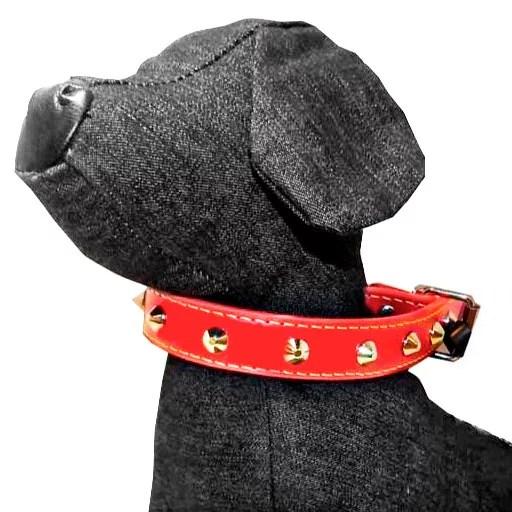 collar para perros cuero en Miraflores Lima Peru