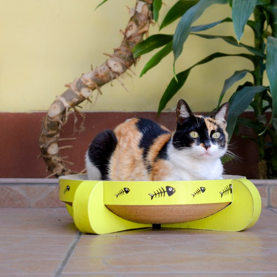 rascador para gatos en Miraflores Lima Peru cat-oh peru fabricantes