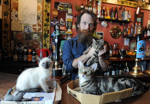 Bag of Nails pub owner with cats