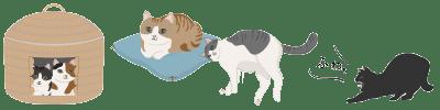 猫の日ライン寝る猫