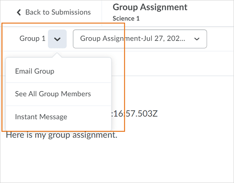 The drop-down action menu appears from the Group Name on the File Submission page in Assignments