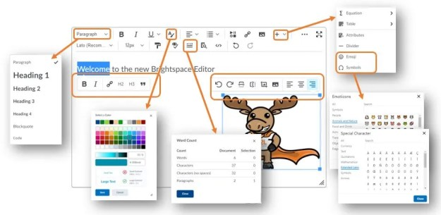 A breakdown of the new features in the Brightspace Editor