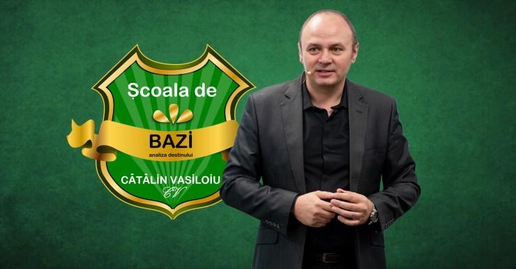 Analiza Destinului BaZI