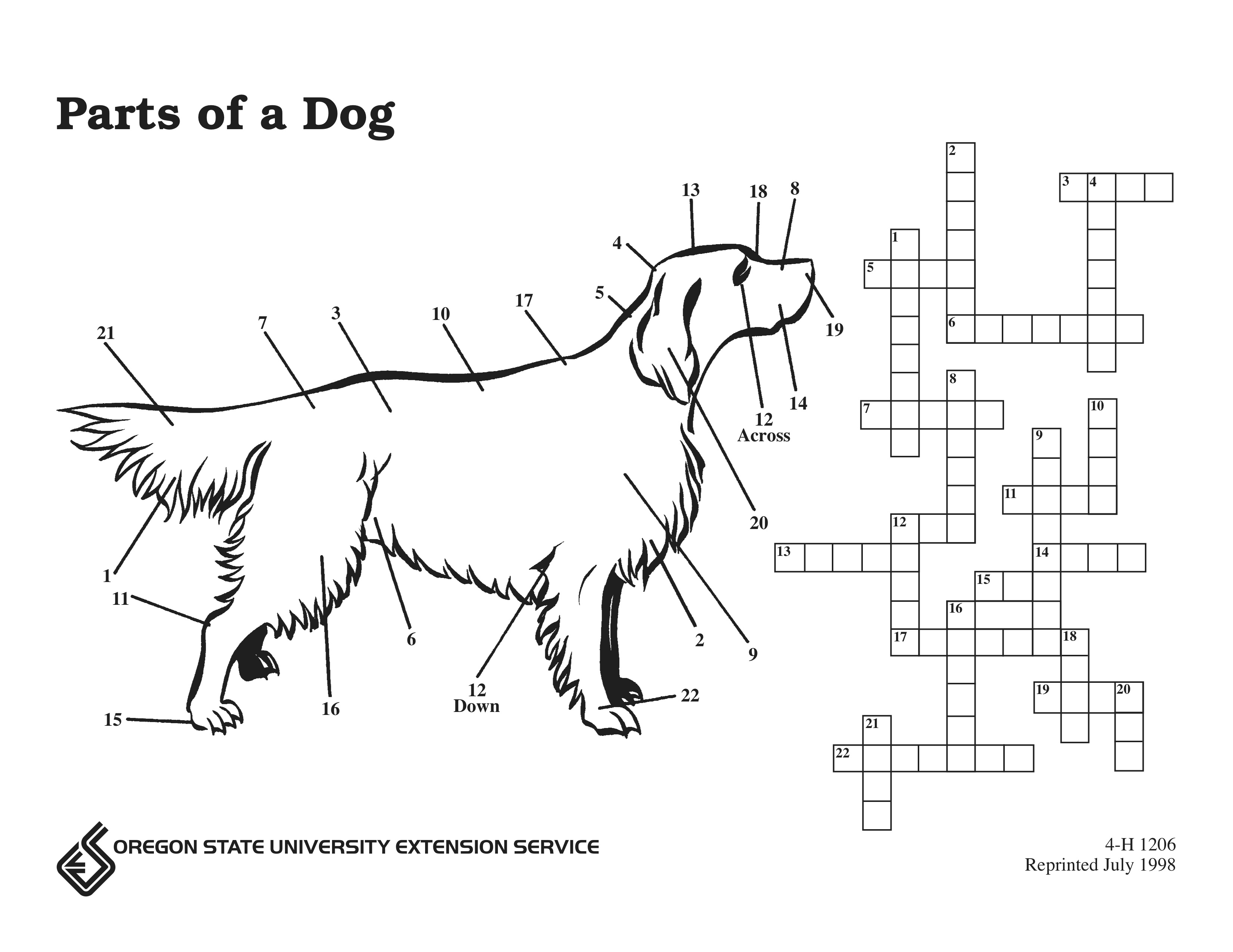 Parts Of A Dog Puzzle