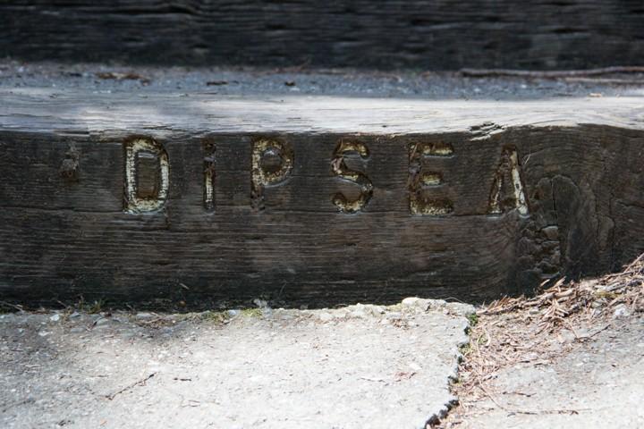 Dipsea Stairs - SKU: CA_DIP_0064