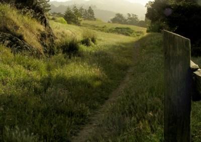 San Geronimo Valley trail
