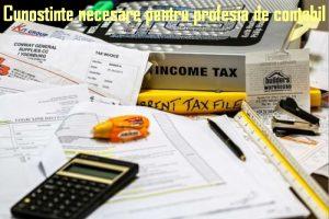 profesia de contabil