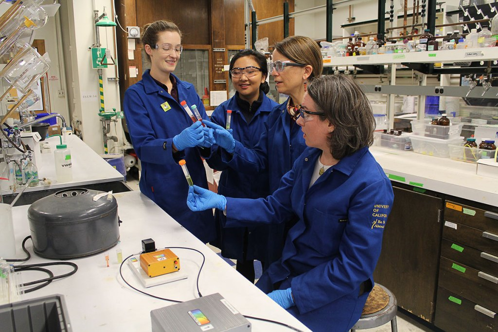 Laura Armstrong (from left), Lauren Irie, Anne Baranger, and Michelle Douskey examine the results of an octanol-water partitioning experiment. Photo courtesy: Anne Baranger