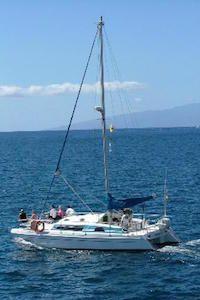 Catamaran Bonadea Tenerife ¡Un barco ideal para visitar las ballenas y delfines! Grupos hasta 20 personas, infórmate. Telf. +34 922 325 536