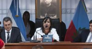 Diputada cecilia Guerrero, Cecilia Guerrero