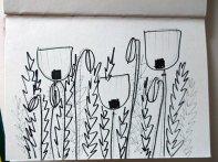 Pen & Pencil Drawing