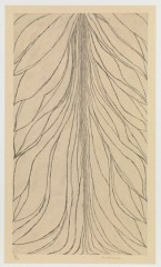 Copyright Louise Bourgeois ''The Smell of Eucalyptus #1' Etching