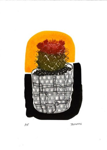 little cactus ccronin