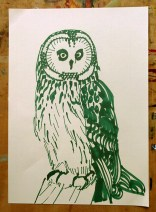 Short-eared Owl, green marker pen, A4 © Catherine Cronin