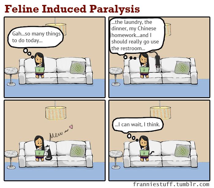 Feline Induced Paralysis