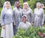 FHIC - FRANCISCAN HOSPITALLER SISTERS, USA