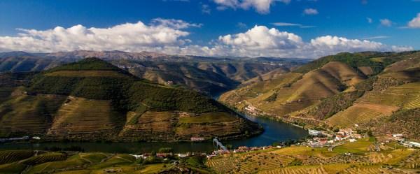 The Douro Valley: Its Vineyards, Grapes and Wine