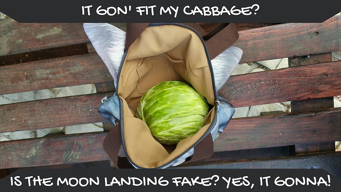 Catbags ability to fit cabbages proves we know what we are talking about - Also the moon landing is fake apparently.
