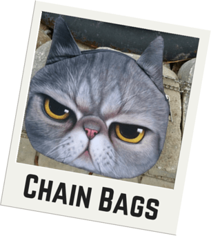 Cat Faced Chain Purse