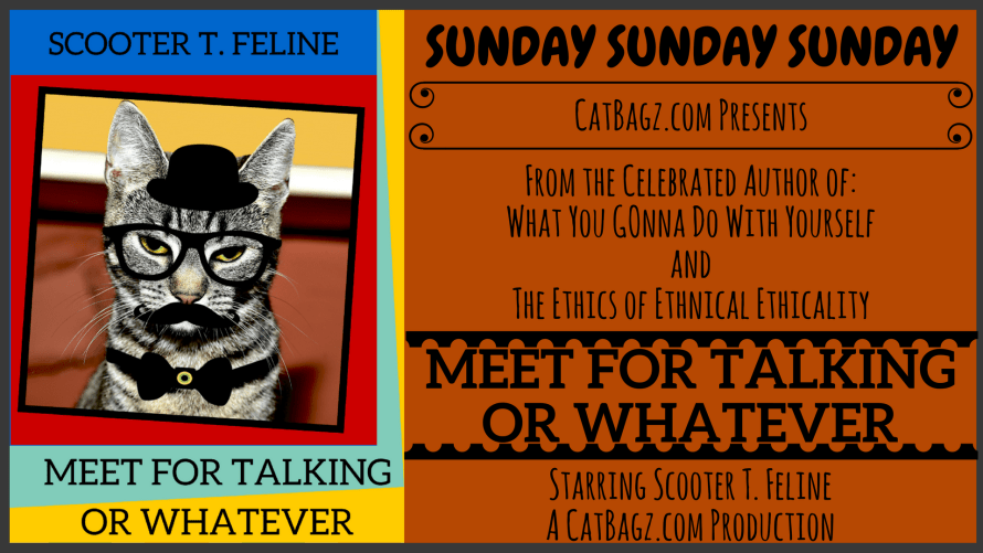 Introducing Scooter T. Feline's MEET FOR TALKING OR WHATEVER Seminar and Self-Serve Dutch Brunch