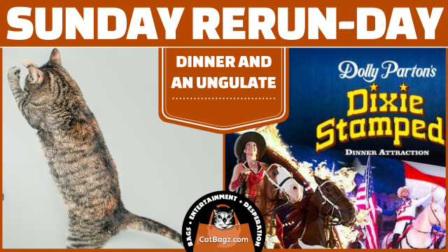 Sunday Rerun-day: Dinner and an Ungulate