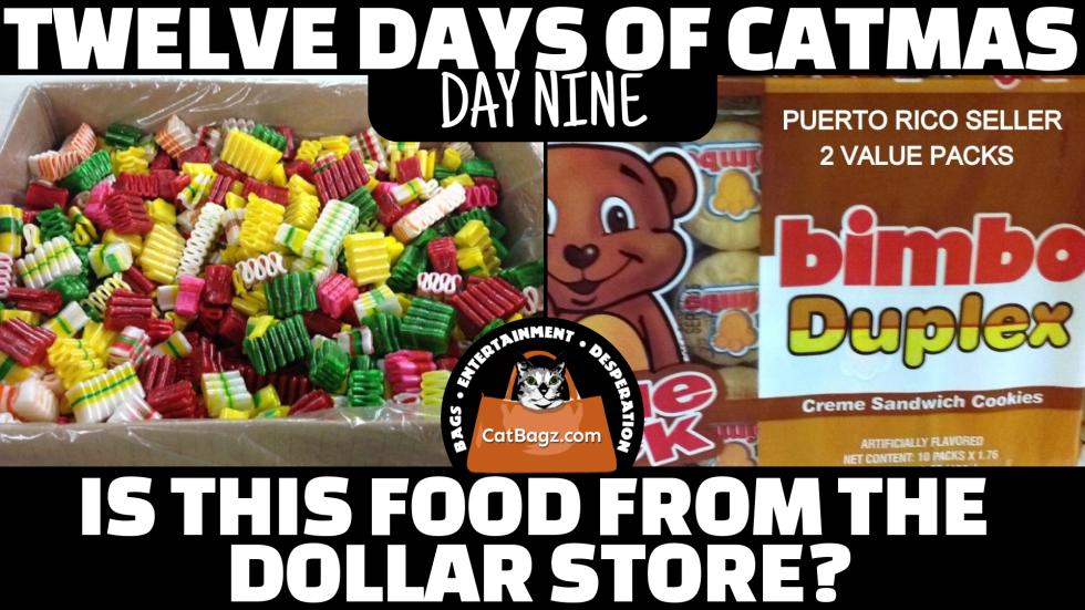 Twelve Days of Catmas – Day 9