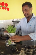 Making the wheat grass juice