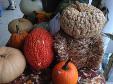 interesting pumpkins