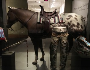 Appaloosa in the Native American Gallery
