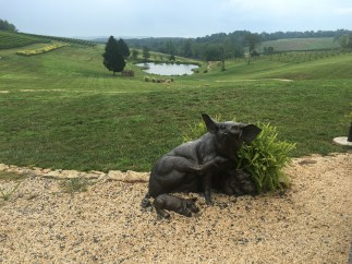 Hogs at Stone Tower Winery