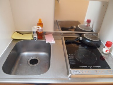 sink and stove (and NO counter space!)