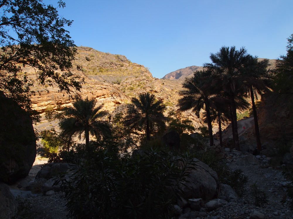 a treacherous drive through wadi bani awf: a near-tragedy, the picturesque village of balad sayt & a glimpse of the infamous snake canyon (6/6)