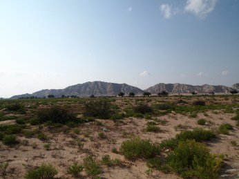 the desert and mountains outside of Sur, Oman