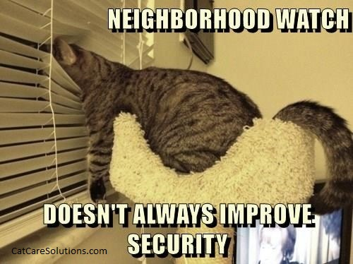 neighborhood watch cat