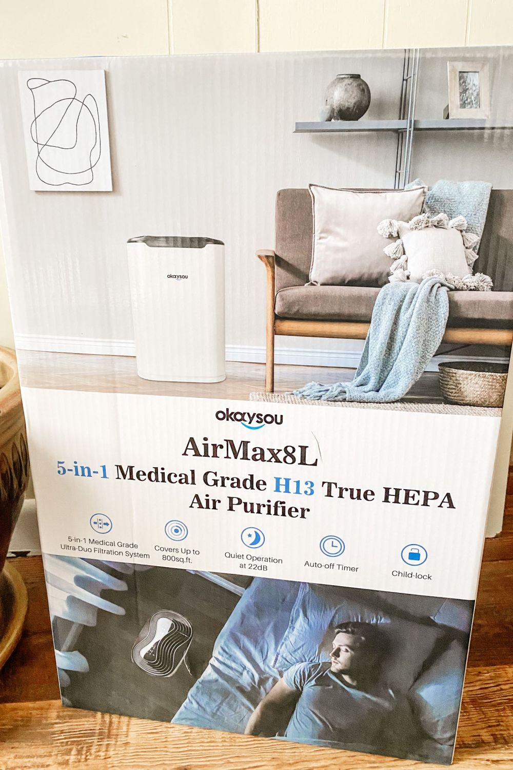 okaysou air purifier review: air purifier for pet odor