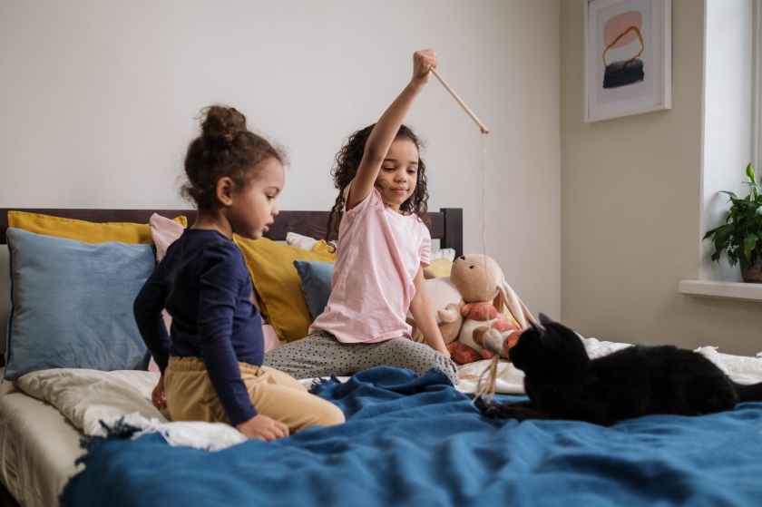 kids playing with black cat: 5 tips for taming your cat
