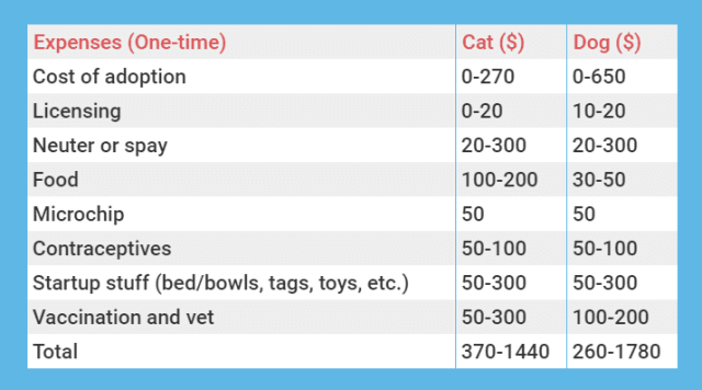 One time expenses table of cat