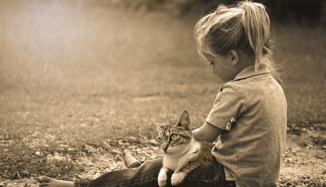 child sit down at field with cat