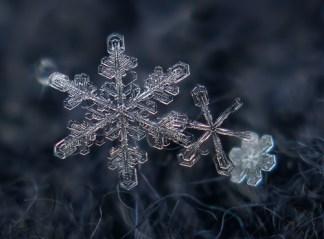 3-snowflake-closeup-photography
