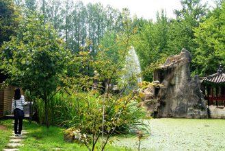 Nami Island Fountain
