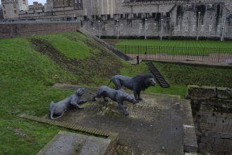 tower of london animals