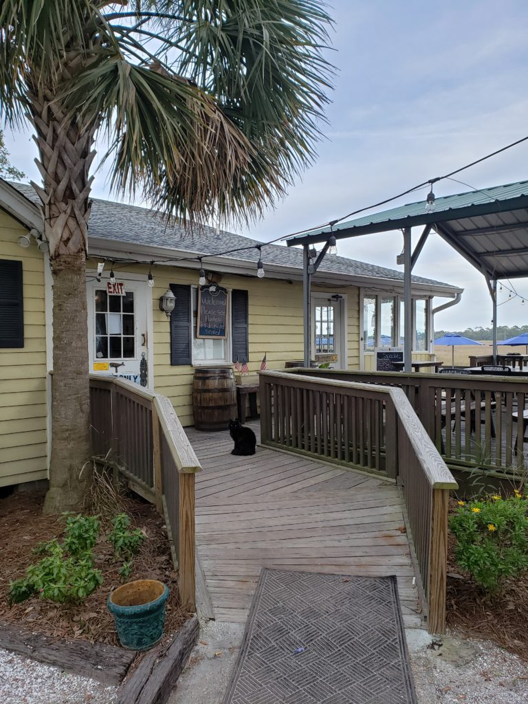 black cat in front of beach tavern