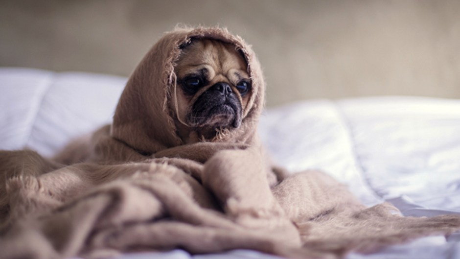 7 Tricks to Combat Boredom