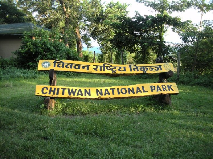 Chitwan National Park. Image Source: YouTube